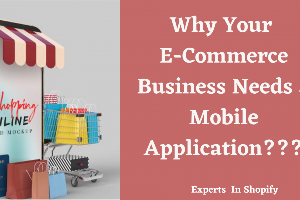 Why Your E-Commerce Business Needs a Mobile Application???